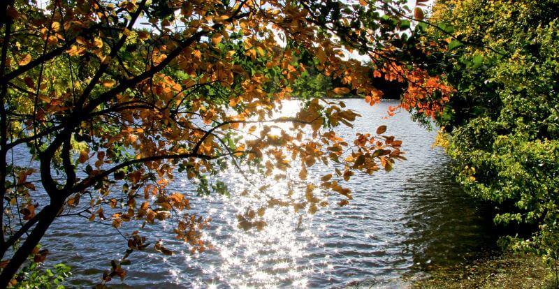 Herbst See